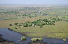 Shoebill Island Camp - Bangweulu Wetlands, Zambia