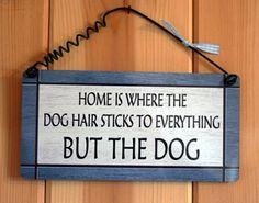 dog hair funny | Schoonmaken (met hond) ondankbaar werk - pagina 3 | HondenForum