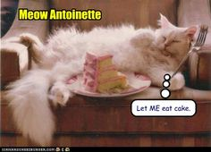 Meow Antoinette.....