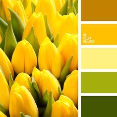 amarillo ámbar, amarillo fuerte y verde, amarillo pardusco, amarillo vivo, color ámbar, color verde hierba, marrón amarillento, oliva, tonos amarillos, tonos cálidos, tonos verdes, verde fuerte, verde oscuro, verde y amarillo.