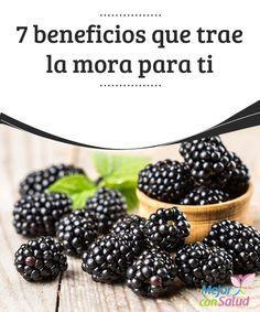 7 beneficios que trae la #mora para ti A pesar de su pequeño tamaño la mora es un fruto rico en #hierro y sustancias #antioxidantes que puede sernos de gran ayuda para combatir la #anemia y otras afecciones #RemediosNaturales