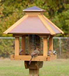 This Gazebo bird feeder is perfect for feeding lots of birds and is specially designed to blend in with the natural environment of your backyard!