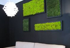 Moss is New Paint: How to Create Art with Moss
