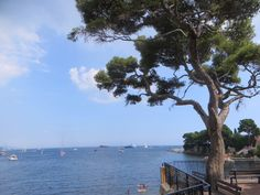 Mediterranean Travels: I will always feel at home in Cap Ferrat #capferrat #mediterranean #mediterraneantravels Lunch On The Beach, Ferrat, Baby On The Way, Fishing Villages, South Of France, Tourism, Spain, Cap, Italy