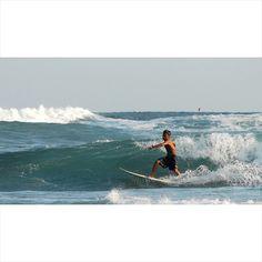 #surf #surfer #surfing #ocean #beach #sea #wave #waves #sun #fun #nature #travel #adventure #sport #aloha #parangtritis #jogja #explorejogja #indonesia