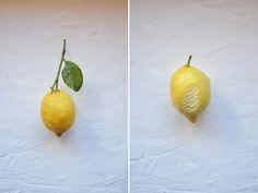 sicilian lemons n°3 ©MammaMariaSicilia