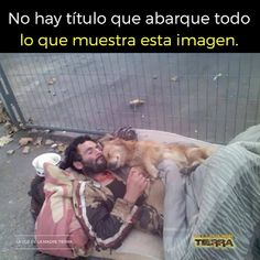 Maldita sociedad ( — 53 answers, 80299 likes Animals And Pets, Baby Animals, Cute Animals, Dog Love, Puppy Love, Tier Fotos, Faith In Humanity, Mans Best Friend, Cat Memes