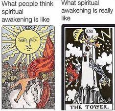 These cards should be in reverse! Wiccan, Witchcraft, Funny Spiritual Memes, Witch Meme, Moon Witch, Baby Witch, Tarot Learning, Psychic Mediums, Tarot Spreads