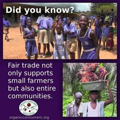 Did you know? Fair trade not only supports small farmers but also entire communities.