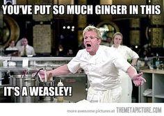 Harry Potter meme | lol love chef gordon ramsay