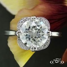 Be a part of your own ring design! Start from scratch, and draw out the ring beside an artist who can make your dream ring come to life! We can also do this online, with a design page assigned to you and your personal designer. We also have live chat if you have ANY questions!