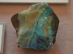 Opal in the Hodgson Gallery © Redpath Museum 2011