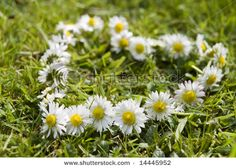 You know I've never made a daisy chain.