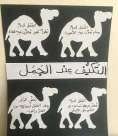 Camel adaptation