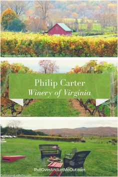 Harvest on the Half-shell at Virginia's Philip Carter Winery - PullOverAndLetMeOut. Gifts For Wine Lovers, Wine Gifts, Fire Pit Images, Great Places, Places To Go, Barolo Wine, Temecula Wineries, Virginia Wineries, Buy Wine Online
