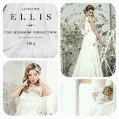 Nye 2014 kjoler fra Ellis Bridal er på vei inn i salongen. Ellis Bridal, Nye 2014, Day Work, One Shoulder Wedding Dress, Wedding Dresses, Pictures, Collection, Fashion, Bride Dresses