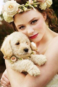 Golden Retriever Puppy~~ In the Wedding/ bodas y mascotas Dog Wedding, Wedding Bride, Summer Wedding, Dream Wedding, Wedding Attire, Garden Wedding, Floral Wedding, Perfect Wedding, Wedding Gifts