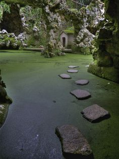 In a cool, green, quiet place one can learn the meaning of life... Sintra, Portugal