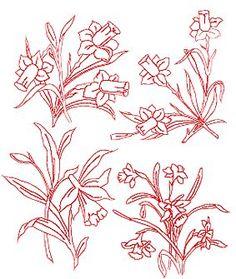 Advanced Embroidery Designs - Daffodil Redwork Set