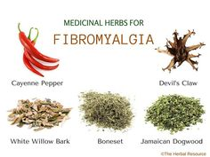 Information on the Health Benefits, Active Ingredients and Side Effects of Medicinal Herbs for Fibromyalgia Treatment and Relief #fibrodiet http://www.herbal-supplement-resource.com/herbs-for-fibromyalgia.html