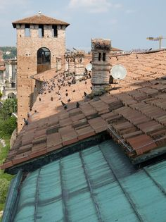 Carlo Scarpa San Zeno Verona