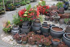 Pots at Vassey Nursery