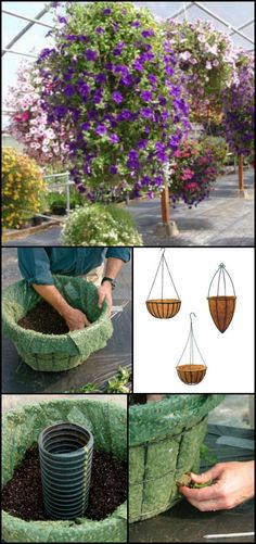 If you want to make a real feature your front porch or fill an empty wall of your house, you can use hanging basket planters! They're basically the same size as a regular planter but they are more noticeable since they are, well, hung and not sitting low on the ground. What also makes them really effective, particularly open-sided baskets, is that they can accommodate up to four times more plants than a traditional basket or planter can! View our album of hanging baskets for inspiration