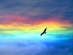 volando en un arcoiris <3