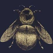 Napoleon Bee Wallpaper By Architronic On Cream Red Royal Blue Charcoal