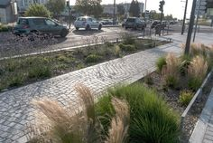 Pathway and bioswale in the Mermoz sector of Lyon, France by Gautier+Conquer Architectes. Click image for full profile & visit the slowottawa.ca boards >> http://www.pinterest.com/slowottawa/