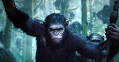 'Dawn of the Planets of the Apes' Trailer: It's Not Looking Good for Humans