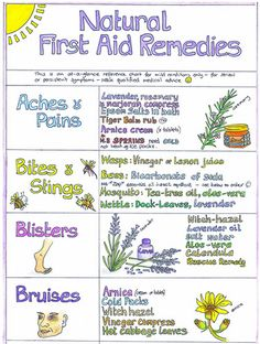 Natural First Aid Wall Chart - Close Up | OrangeburstLtd | Flickr