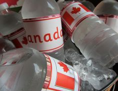 Canada Day! Canada Day Party Ideas | Photo 1 of 29 | Catch My Party