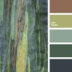Color Palette #3249   Color Palette Ideas   Bloglovin'