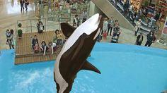 Aquarium of the Bay Introduces New AR and VR Attractions - VRScout http://crwd.fr/2i5I7lL #VR #AR #IoT #digital #AI #ARVR #entertainment