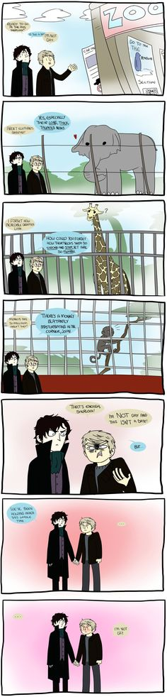 Well you're clearly not gay but that doesn't mean you aren't in love with Sherlock!
