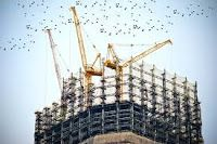 The Australian Construction Industry could use some innovation. Make working on construction a breeze with these handy tips. Construction Sector, Construction Companies, Construction Images, Construction Contractors, Lego Construction, Construction Business, Economies Of Scale, Site Photo, Commercial Construction
