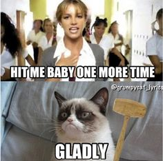 Grump has the right idea..... Grumpy Cat #GrumpyCat #Humor #Meme