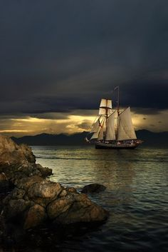 A New Zealand tall ship leaves Victoria Harbour off Vancouver Island heading into the sunset ~ photo by Jason van der Valk.sail away sail Tall Ships, Victoria Harbour, Pirate Life, Sail Away, Belle Photo, Beautiful World, Beautiful Sky, Sailing Ships, Beautiful Pictures
