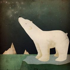 CONSTELLATIONS Polar Bear ART ILLUSTRATION by nativevermont