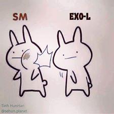 I am not an Exo-L BUT I would like to do that too!!!