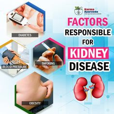 Factor Responsible for kidney disease . Causes Of Kidney Disease, How To Cure Gout, Healthy Kidneys, Fitness Workout For Women, Blood Pressure, Factors, Diabetes, Health Tips, No Response