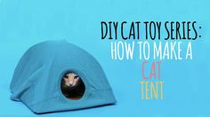 How to build a cat tent - Reinforcing 3rd grade Math vocabulary in a fun context - Uses the terms 90 degree angle and intersect.