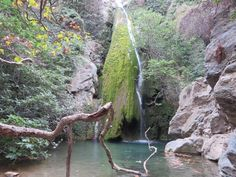 #Richtis #Gorge in #Sitia #Crete Crete, Waterfall, Gardens, River, Outdoor, Beautiful, Display, Backgrounds, Summer Vacations