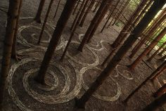 Экологический ленд-арт от Сильвена Мейера. - Путешествуем вместе