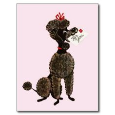 Vintage card showing a standard poodle.