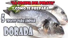 La Cocina Del Pirata - YouTube