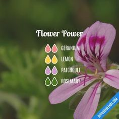 Essential oil diffuser blend - Flower Power: geranium, lemon, patchouli, rosemary #PatchouliEssentialOil