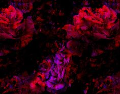 """Check out new work on my @Behance portfolio: """"deconstructed roses"""" http://on.be.net/1L1Hj3W"""