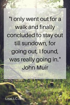 Movement Quote: Going out is really going in - by John Muir